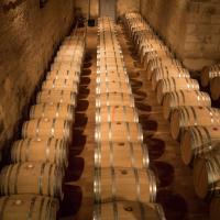 Atelier Oenologique au Vignoble