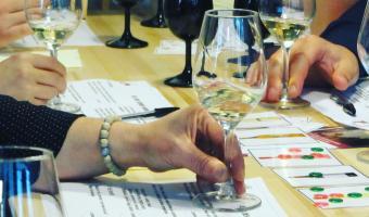 Vino Passeport Jeux du vin